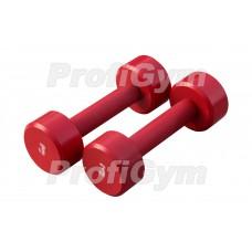 Гантели для фитнеса 3 кг Profigym ГНП-3
