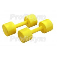 Гантели для фитнеса 9 кг Profigym ГНП-9