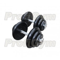 Гантель разборная 20 кг Profigym-Антат ГРРА-20