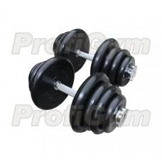 Гантель разборная 25 кг Profigym-Антат ГРРА-25