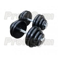 Гантель разборная 35 кг Profigym-Антат ГРРА-35